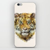tiger iPhone & iPod Skins featuring Tiger // Strength by Amy Hamilton