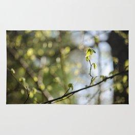 Nature's Bokeh Rug