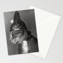 Funny Cat Vintage Photograph, 1930s Stationery Cards