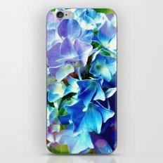Blue Hydrangea iPhone & iPod Skin