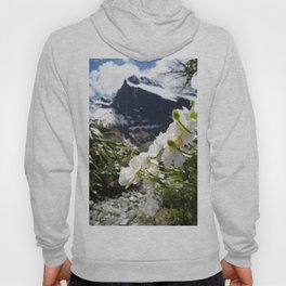 White Flowers and Mountain Pass (Milford Sound) Hoody