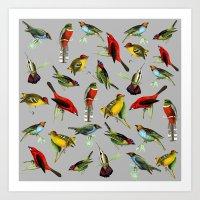 Grey Vintage Birds Art Print