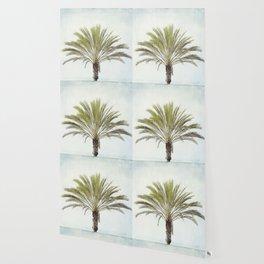 Palm Tree Photography, California Beach Coastal Art, Palm Trees Sky Wallpaper