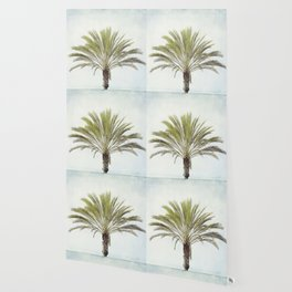 Palm Tree Photography, California Beach Coastal Art, Palm Trees Sky Wallpaper