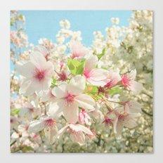 Spring Blossom Canvas Print
