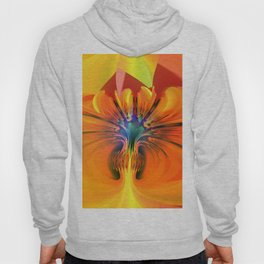 Abstract Composition 116 Hoody