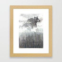 The Bear Lin  Framed Art Print