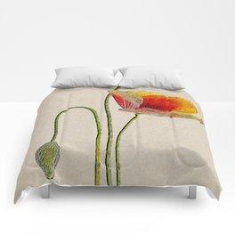 Orange Poppy Comforters