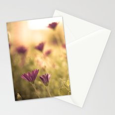 Sun in the meadow  Stationery Cards