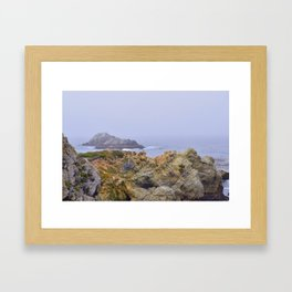 Point Lobos Framed Art Print