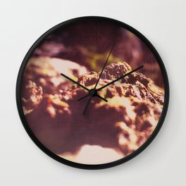 Lost Worlds Wall Clock