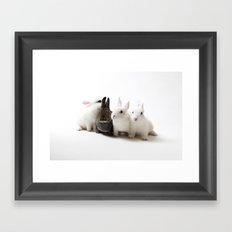 Bunny Secrets Framed Art Print