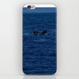 Humpback in Chatham Strait iPhone Skin