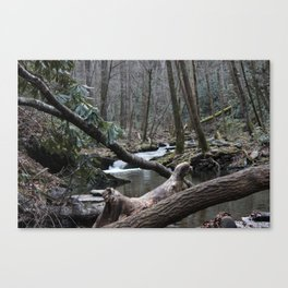 Wooded Waters Canvas Print