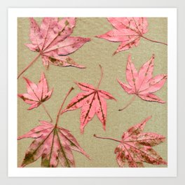 Japanese maple leaves - pink on natural unbleached paper Art Print
