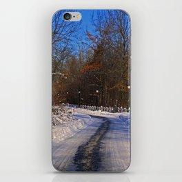Frosty Footpath iPhone Skin