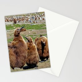 King Penguin Chicks Stationery Cards
