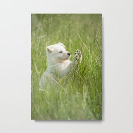 Stop, or I run away, the little puppy is having fun Metal Print