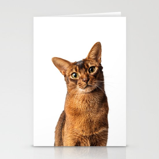 Abyssinian Eyes Stationery Cards