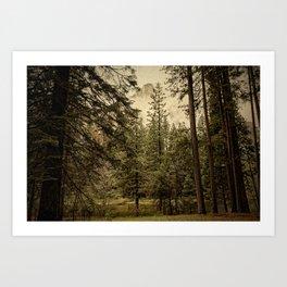 Yosemite - Study 35 Art Print