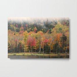 Crawford Notch, New Hampshire Metal Print