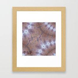 Berlin Kaiser Wilhelm // Pattern Abstract Photography Framed Art Print