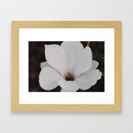Magnolia Portrait Framed Art Print