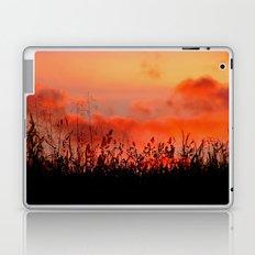 Rainbow Sundown Laptop & iPad Skin