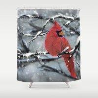 cardinal Shower Curtains featuring Cardinal by Ben Geiger