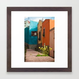 Colour Framed Art Print
