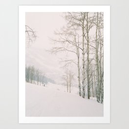 Aspen in snow - Beaver Creek, Colorado Art Print