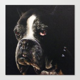Dog IV Canvas Print