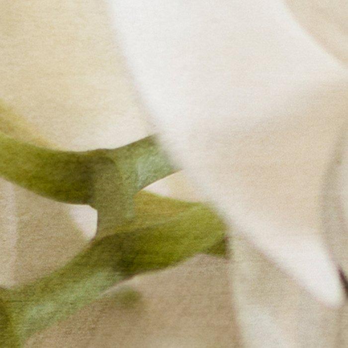 White Orchids Leggings