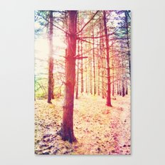 Fantasy in the Pines Canvas Print