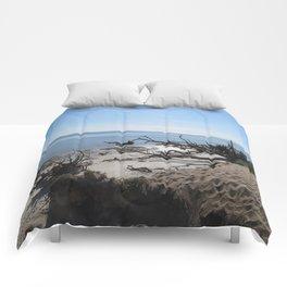 The Boney Trees on the Beach Comforters