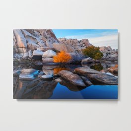 Desert Oasis, Joshua Tree National Park Metal Print