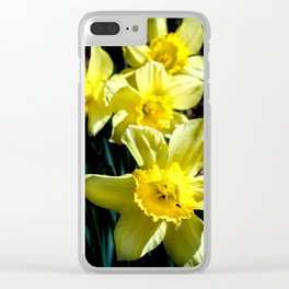 Daffodils in the dark. Clear iPhone Case
