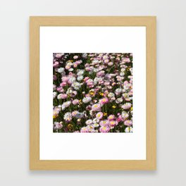 Flowers Everywhere!  Framed Art Print