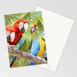 Curious macaws Stationery Cards