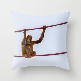 On the Wire Throw Pillow