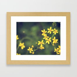 yellow bursts Framed Art Print