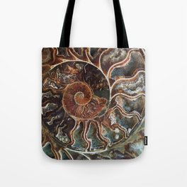 Fossilized Shell Tote Bag