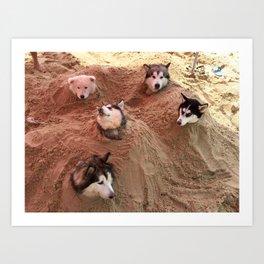 The doggy in beach Art Print