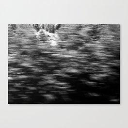 winter texture 3 Canvas Print
