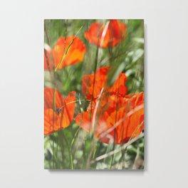 Poppy Metal Print