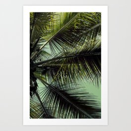 Tropical summer breeze Art Print