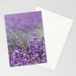 Purple Lavender Flowers Stationery Cards