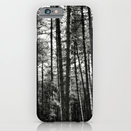 Pine trees... iPhone Case