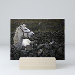 Equestrian Winds Mini Art Print