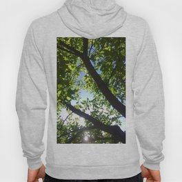 Light Up Photography Hoody